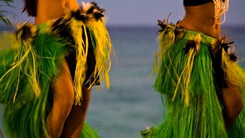 Imagen de Fiestas hawaianas decoración (4)