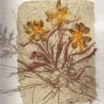Flores secas decoración