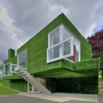 Decorando nuestras paredes exteriores y fachadas con pasto