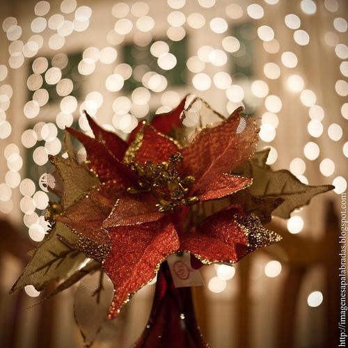 Decoración mesa navideña (6)