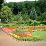 Paisajismo decoración jardines