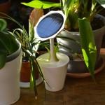 Decoración de jardines con flores fotovoltaicas (22)