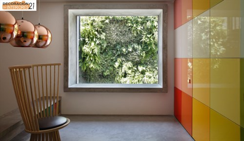 DM House una casa fresca llena de color juvenil (8)